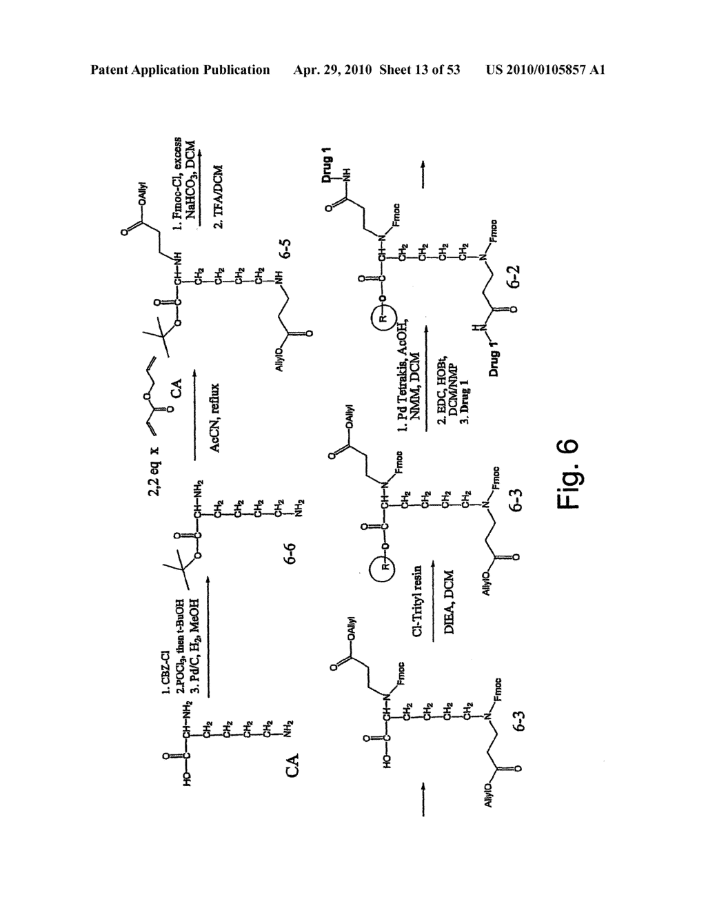 DENDRIMERIC PLATFORM FOR CONTROLLED RELEASE OF DRUGS - diagram, schematic, and image 14
