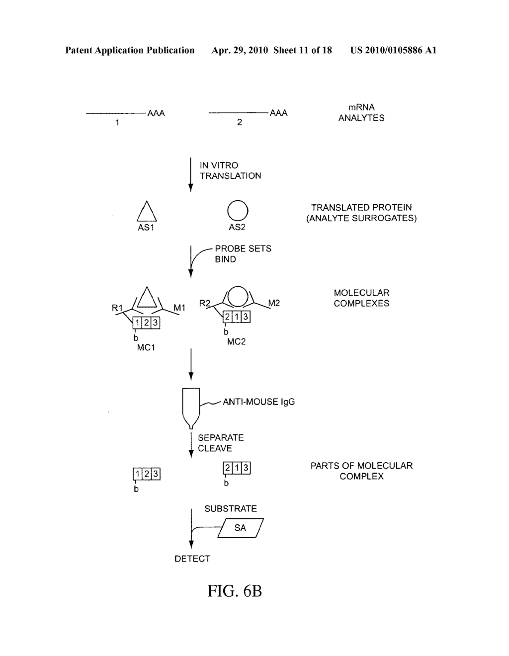 COMPOSITIONS, METHODS, AND KITS FOR FABRICATING CODED MOLECULAR TAGS - diagram, schematic, and image 12