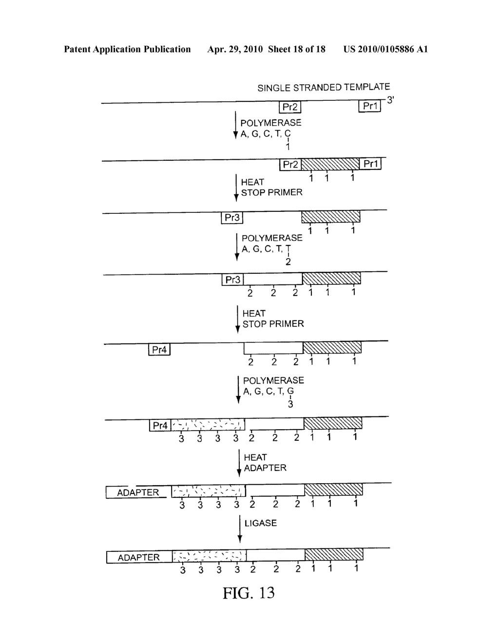 COMPOSITIONS, METHODS, AND KITS FOR FABRICATING CODED MOLECULAR TAGS - diagram, schematic, and image 19