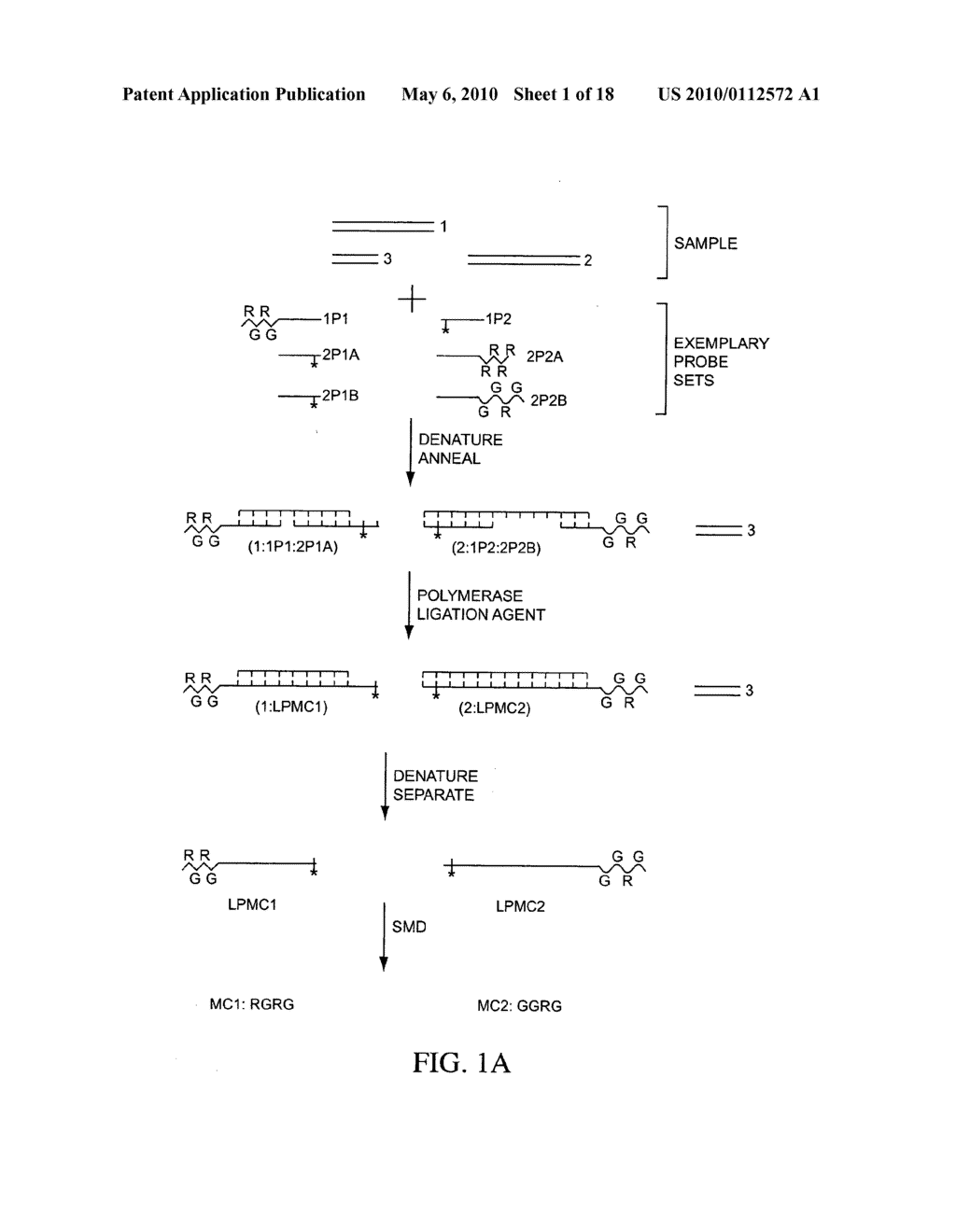 COMPOSITIONS, METHODS, AND KITS FOR FABRICATING CODED MOLECULAR TAGS - diagram, schematic, and image 02