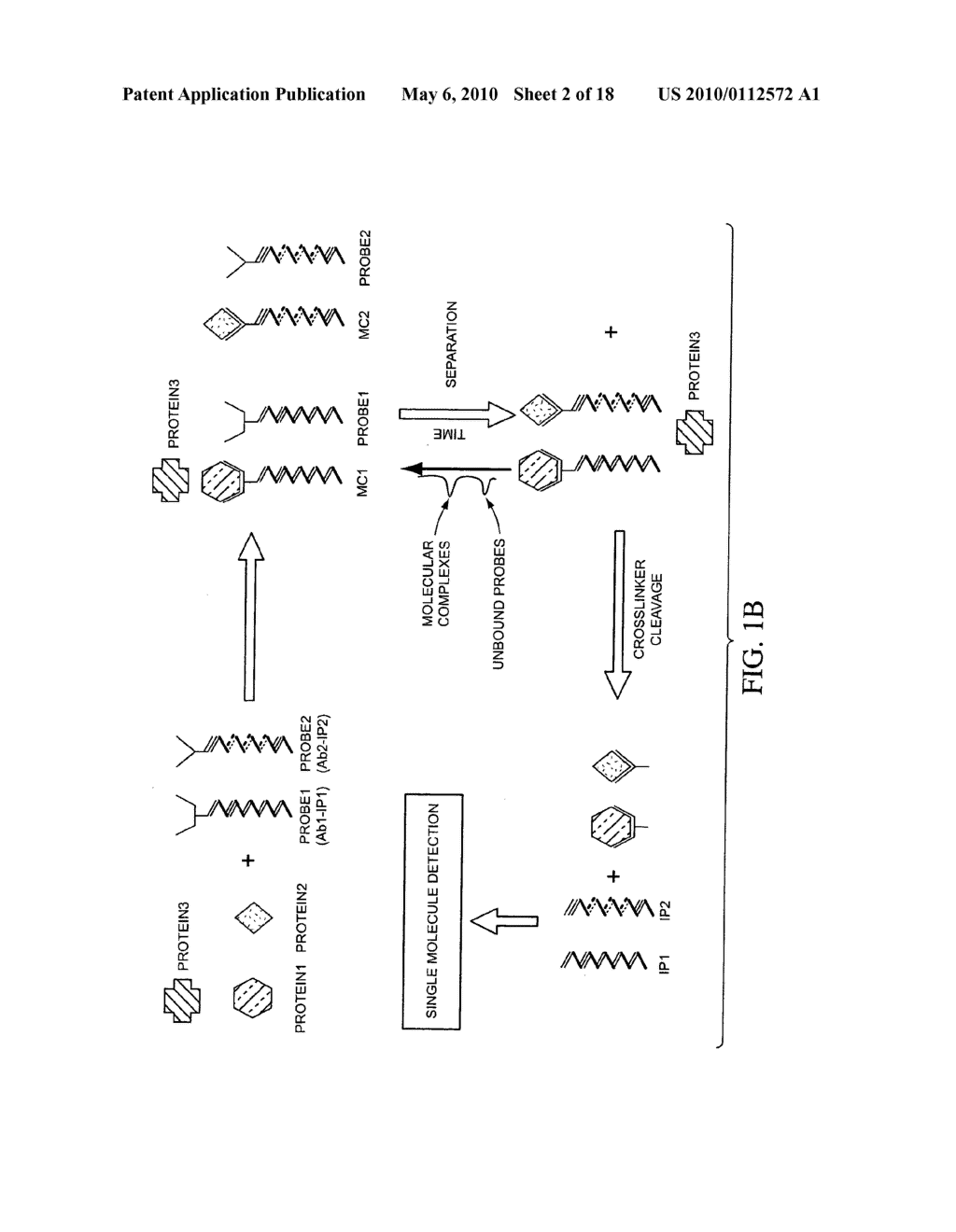 COMPOSITIONS, METHODS, AND KITS FOR FABRICATING CODED MOLECULAR TAGS - diagram, schematic, and image 03