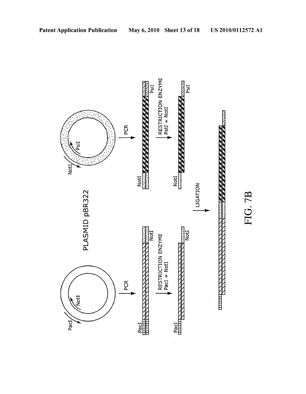 COMPOSITIONS, METHODS, AND KITS FOR FABRICATING CODED MOLECULAR TAGS - diagram, schematic, and image 14