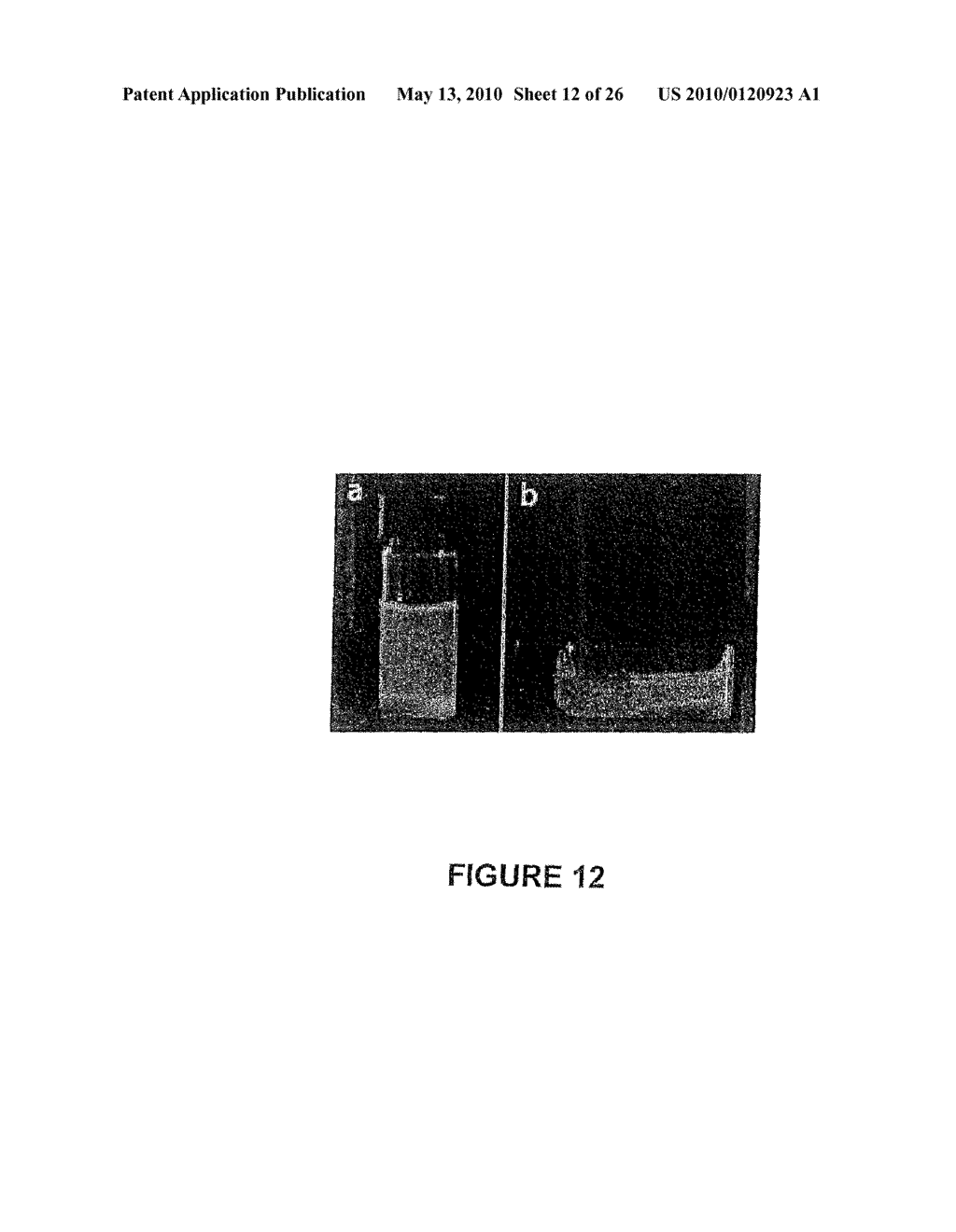ADHESIVE COMPLEX COACERVATES AND METHODS OF MAKING AND USING THEREOF - diagram, schematic, and image 13