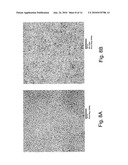 Methods and devices for forming nanostructure monolayers and devices including such monolayers diagram and image