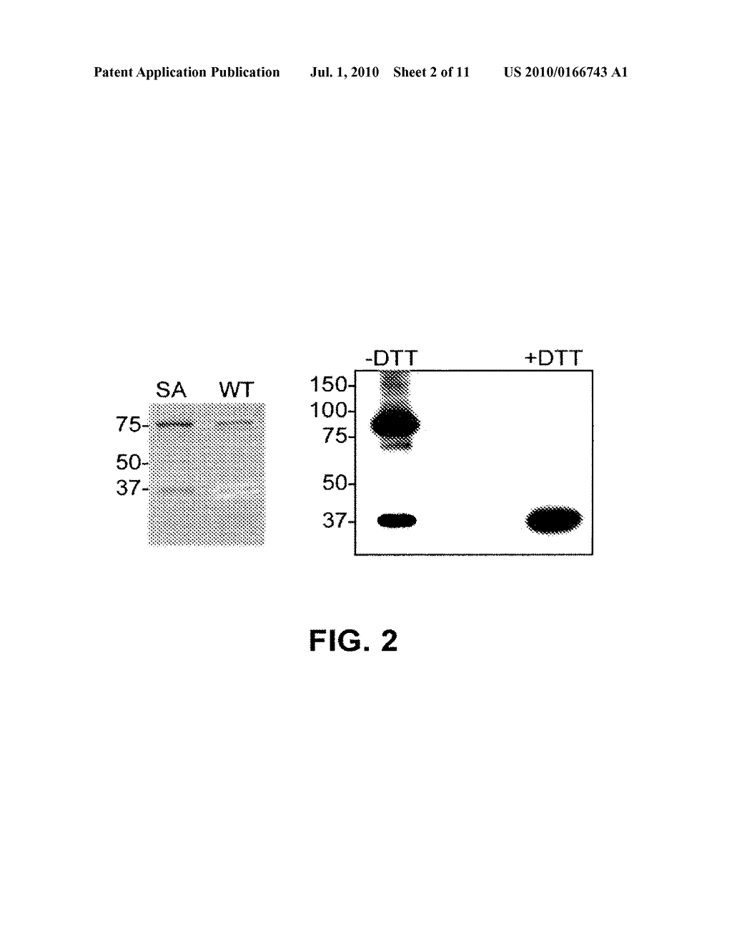 METHOD OF DETECTING OCULAR DISEASES AND PATHOLOGIC CONDITIONS AND TREATMENT OF SAME - diagram, schematic, and image 03