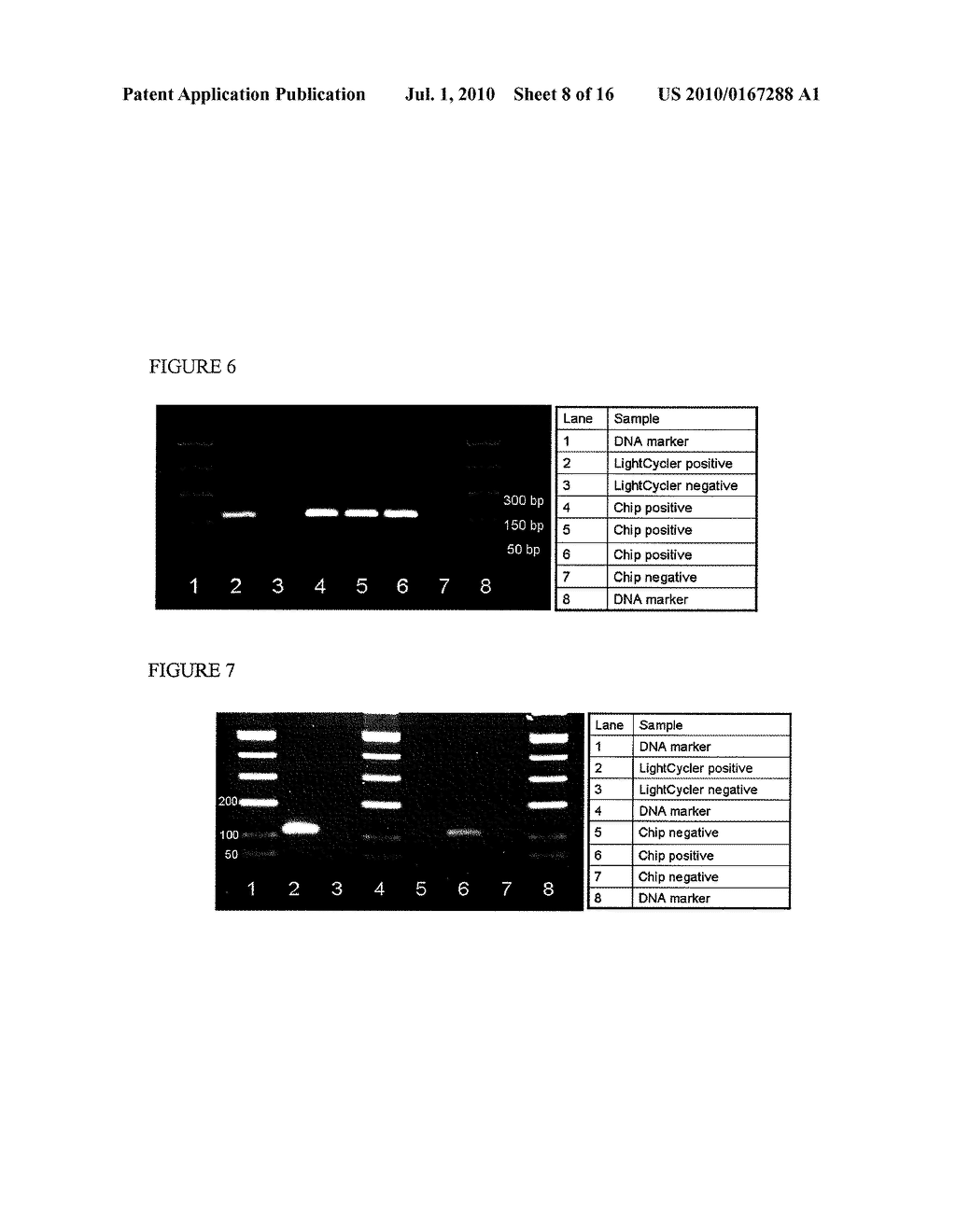 Methods and Compositions Related to Continuous Flow Thermal Gradient PCR - diagram, schematic, and image 09