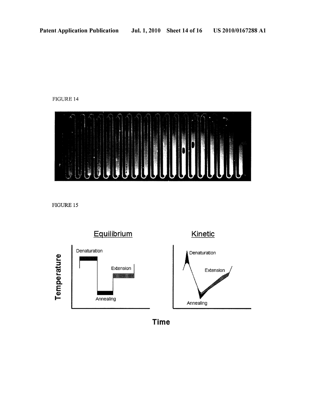Methods and Compositions Related to Continuous Flow Thermal Gradient PCR - diagram, schematic, and image 15