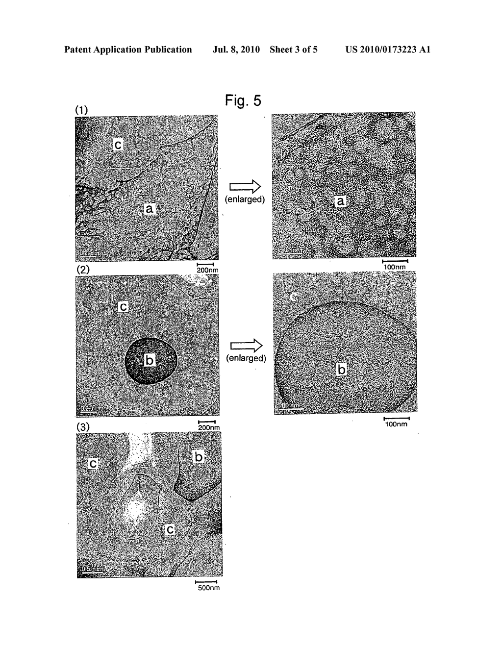 Graft Copolymer and Process for Producing the Same - diagram, schematic, and image 04