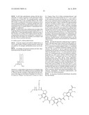 FLUORESCENT QUENCHING DETECTING REAGENTS AND METHODS diagram and image