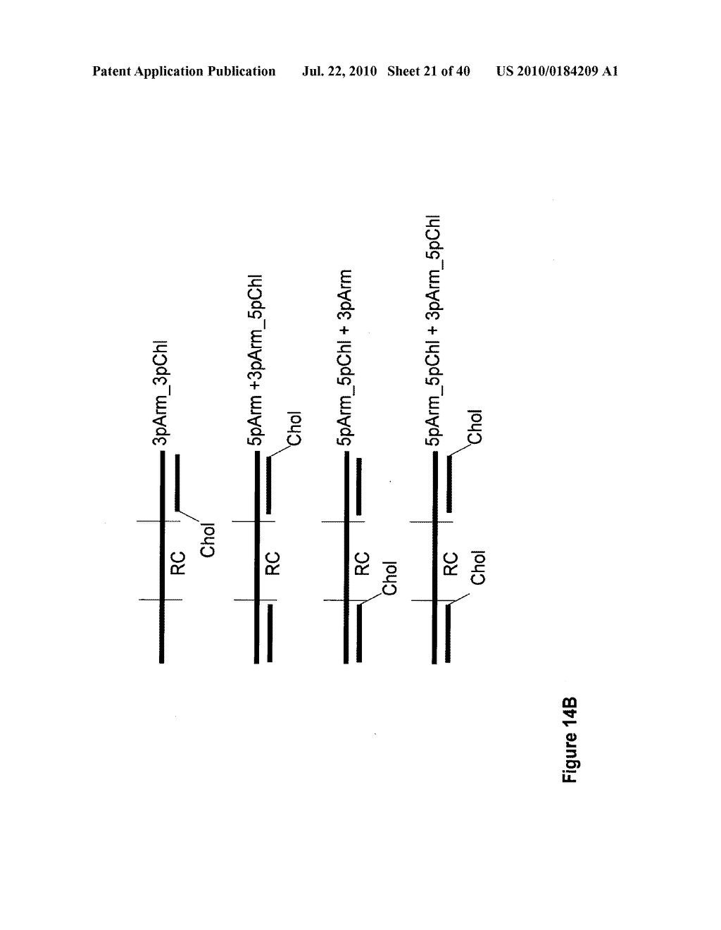 COMPOSITIONS AND METHODS FOR INHIBITING GENE SILENCING BY RNA INTERFERENCE - diagram, schematic, and image 22