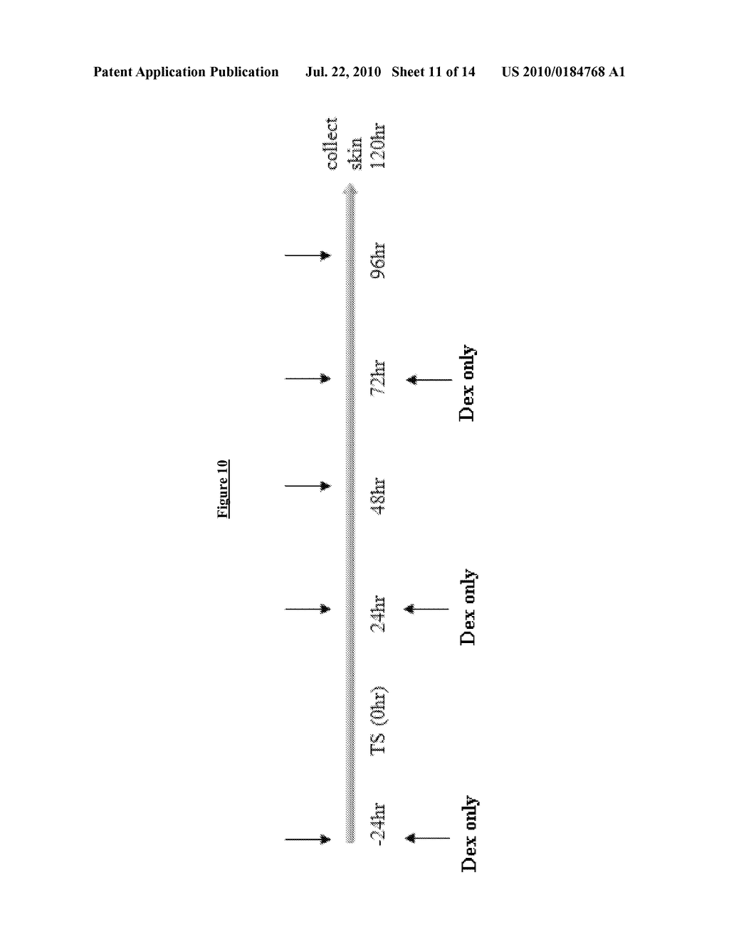 Isoprenyl Compounds and Methods Thereof - diagram, schematic, and image 12