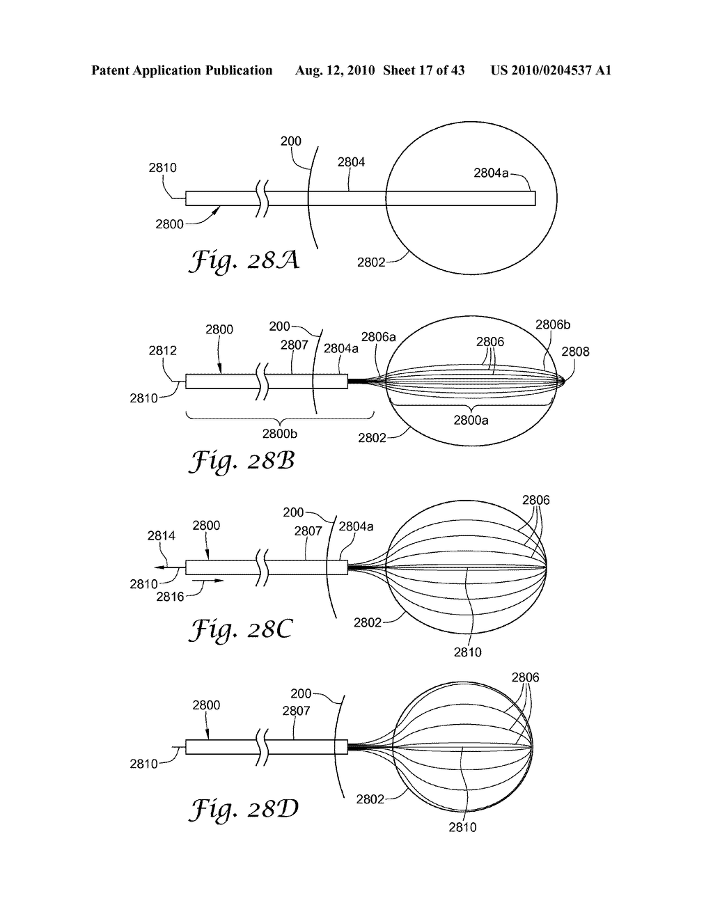BRACHYTHERAPY APPARATUS AND METHODS FOR USING THEM - diagram, schematic, and image 18