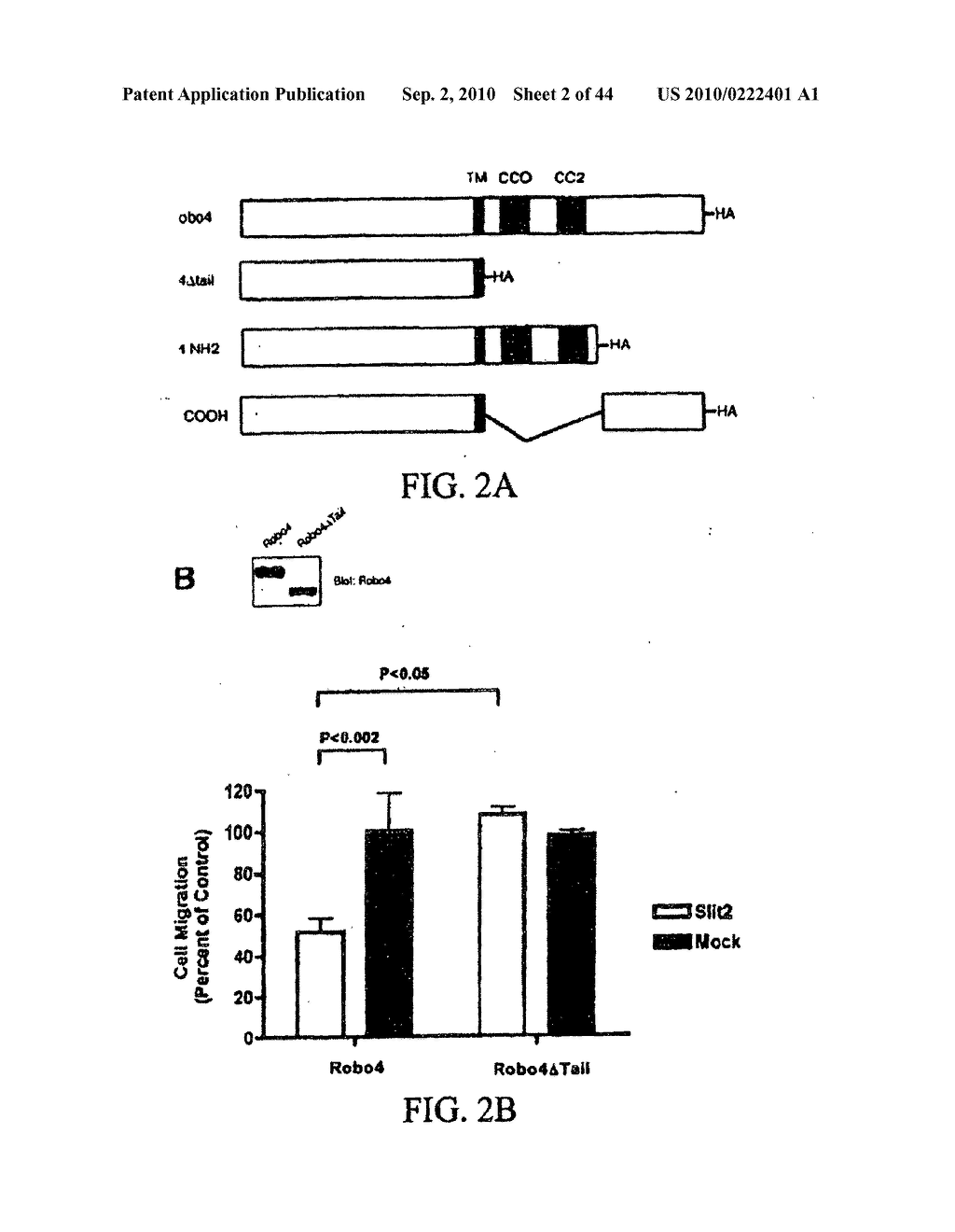 COMPOSITIONS AND METHODS FOR TREATING PATHOLOGIC ANGIOGENESIS AND VASCULAR PERMEABILITY - diagram, schematic, and image 03