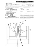 ENDODONTIC INSTRUMENT AND METHOD OF MANUFACTURING diagram and image