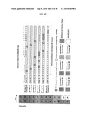 METHOD OF CONSTRUCTING RESOURCE ALLOCATION MAP FOR MOBILE COMMUNICATION SYSTEM diagram and image