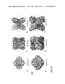 PROTEIN NODES FOR CONTROLLED NANOSCALE ASSEMBLY diagram and image