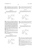 SUBSTITUTED 2-ACETAMIDO-5-ARYL-1,2,4-TRIAZOLONES AND USE THEREOF diagram and image
