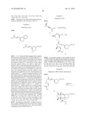 EXO-SELECTIVE SYNTHESIS OF HIMBACINE ANALOGS diagram and image