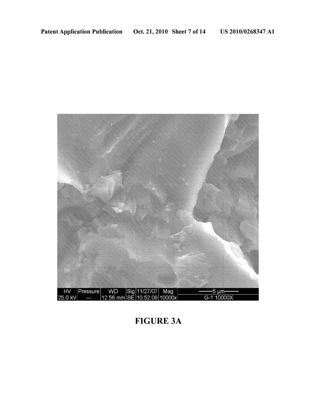 MICRO AND NANO SCALE SURFACE TEXTURED TITANIUM-CONTAINING ARTICLES AND METHODS OF PRODUCING SAME - diagram, schematic, and image 08