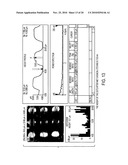 Stamps with micrometer-and nanometer-scale features and methods of fabrication thereof diagram and image