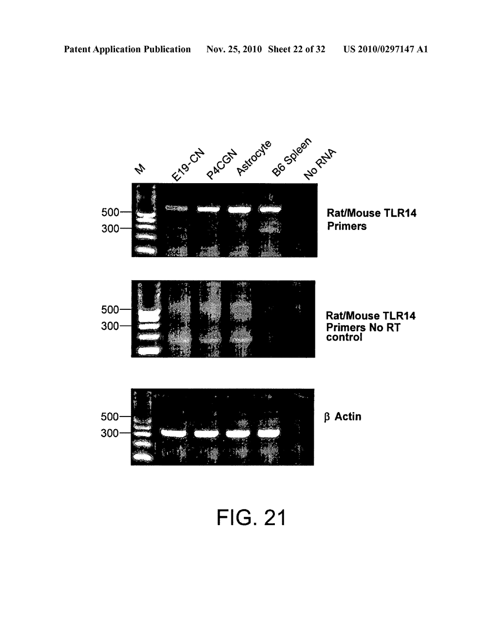 COMPOSITIONS AND METHODS FOR MODULATING TLR14 ACTIVITY - diagram, schematic, and image 23