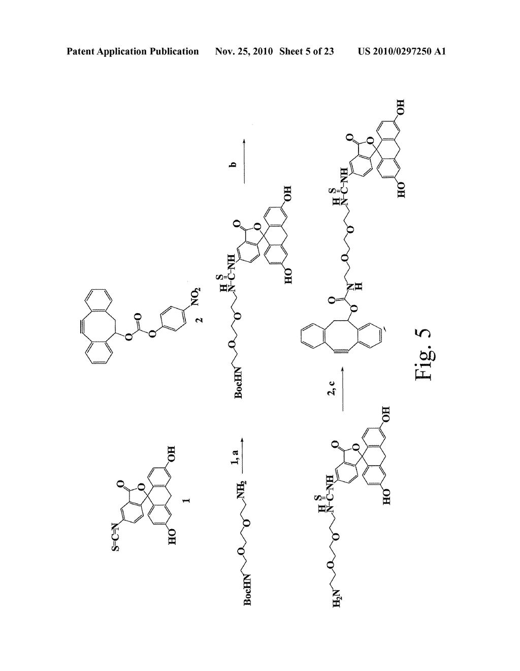 ALKYNES AND METHODS OF REACTING ALKYNES WITH 1,3-DIPOLE-FUNCTIONAL COMPOUNDS - diagram, schematic, and image 06