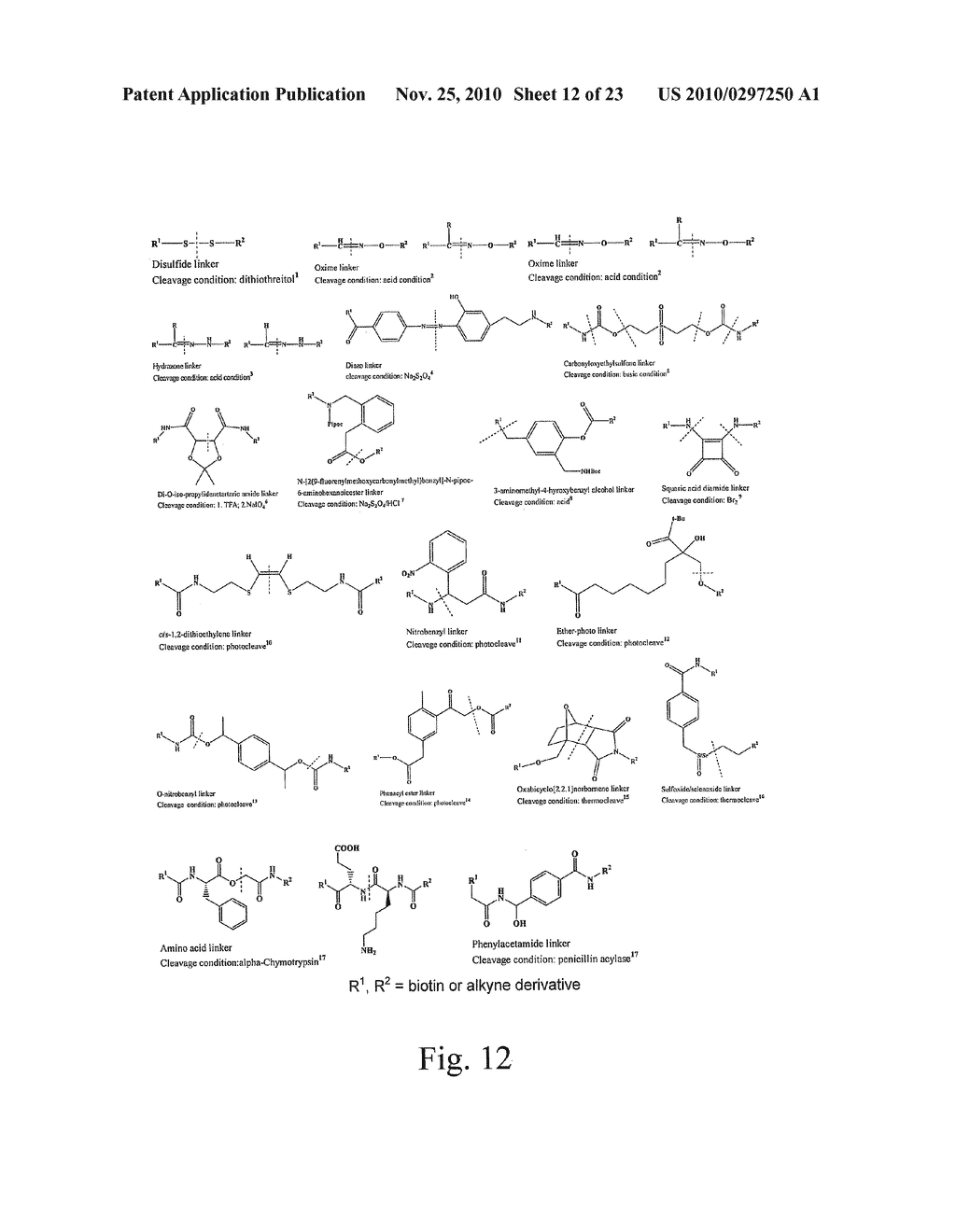ALKYNES AND METHODS OF REACTING ALKYNES WITH 1,3-DIPOLE-FUNCTIONAL COMPOUNDS - diagram, schematic, and image 13