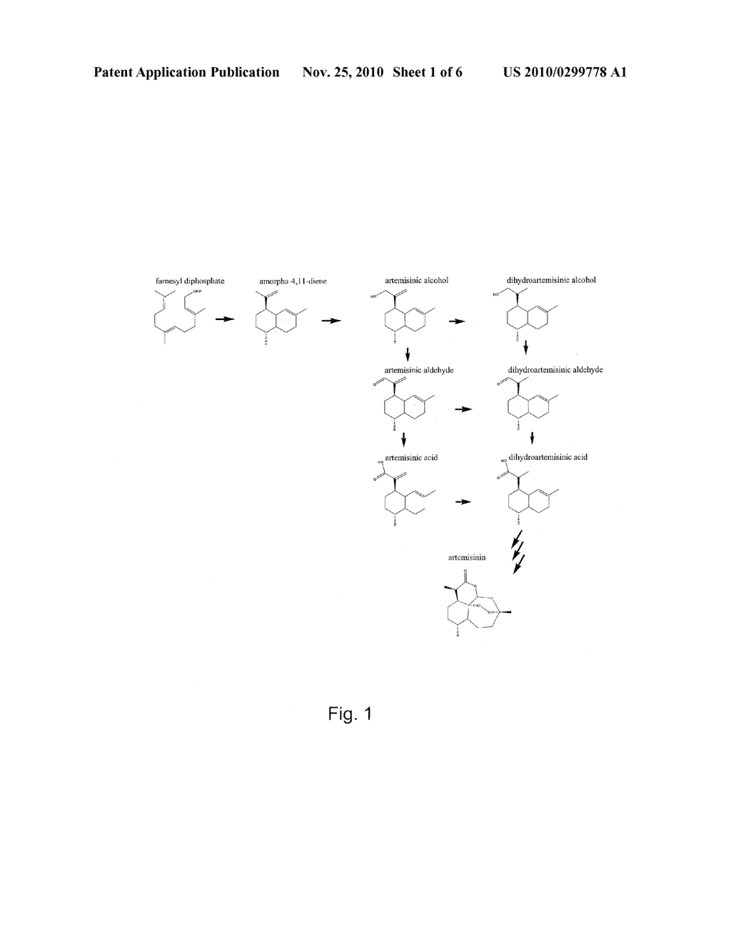 NUCLEOTIDE SEQUENCE ENCODING ARTEMISINIC ALDEHYDE DOUBLE BOND REDUCTASE, ARTEMISINIC ALDEHYDE DOUBLE BOND REDUCTASE AND USES THEREOF - diagram, schematic, and image 02