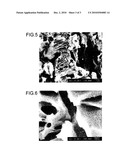 COMPOSITE OF METAL AND RESIN AND METHOD FOR MANUFACTURING THE SAME diagram and image
