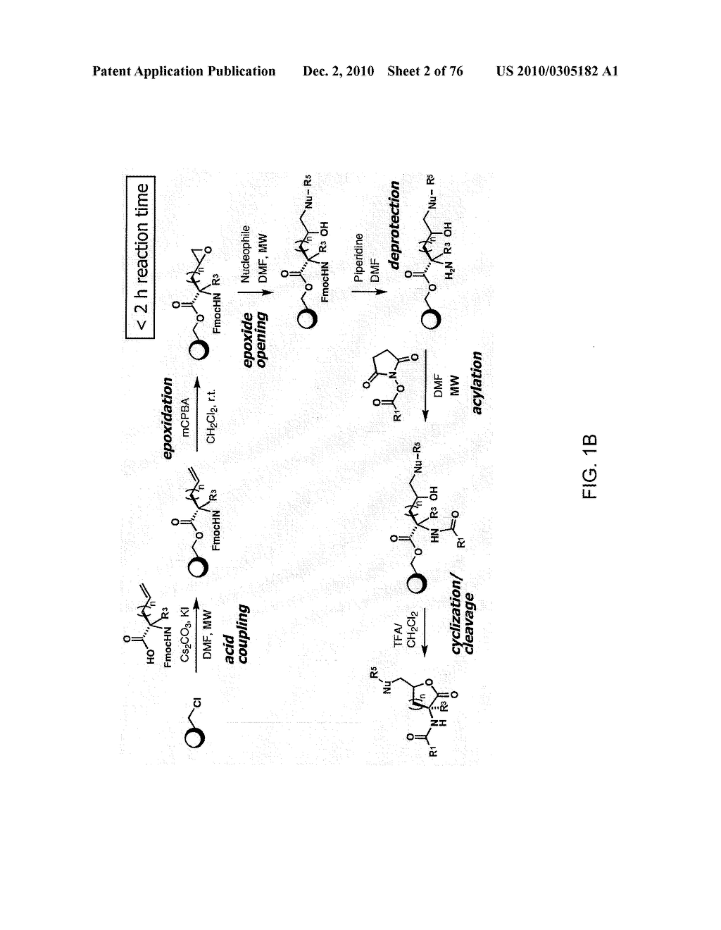 COMPOUNDS AND METHODS FOR MODULATING COMMUNICATION AND VIRULENCE IN QUORUM SENSING BACTERIA - diagram, schematic, and image 03