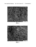 NOVEL NANOCOMPOSITES AND NANOCOMPOSITE FOAMS AND METHODS AND PRODUCTS RELATED TO SAME diagram and image