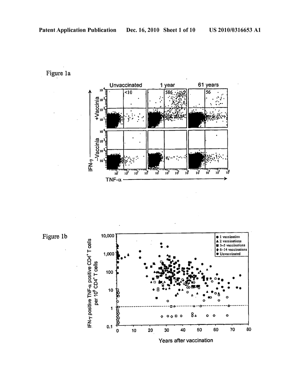 COMPOSITIONS AND METHODS FOR DIAGNOSIS AND TREATMENT OF ORTHOPOXVIRUSES - diagram, schematic, and image 02