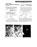 Recombinant Cell Clones Having Increased Stability and Methods of Making and Using the Same diagram and image