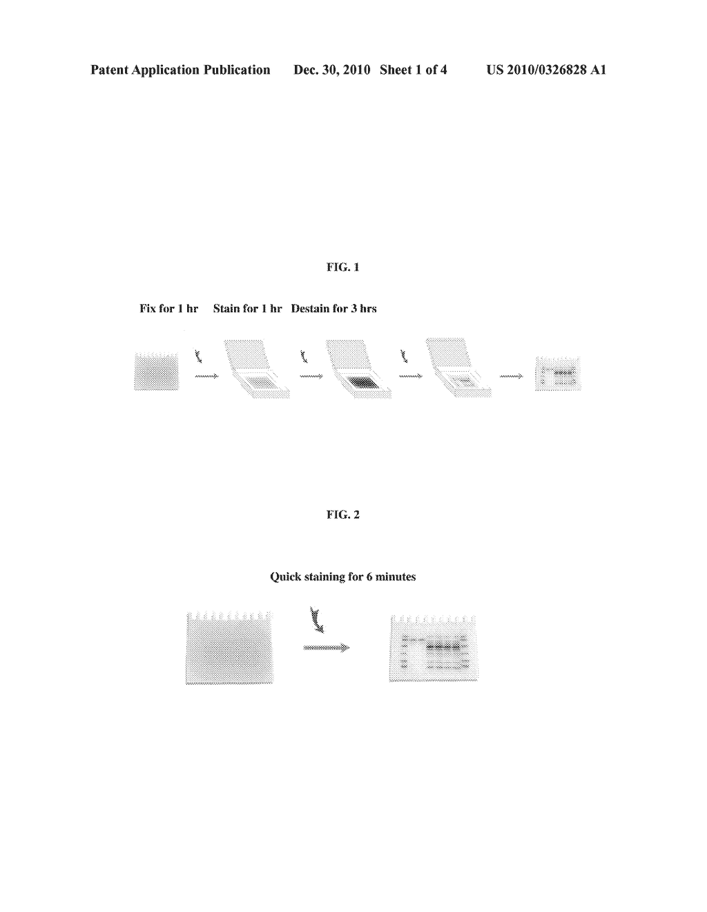 RAPID ELECTROPHORESIS BINDING METHOD AND RELATED KITS AND COMPOSITIONS - diagram, schematic, and image 02