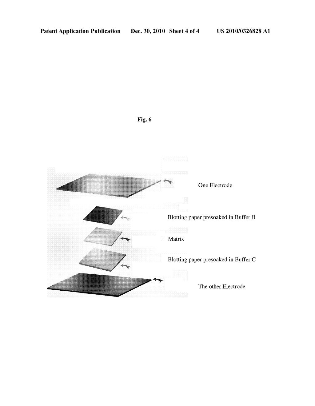 RAPID ELECTROPHORESIS BINDING METHOD AND RELATED KITS AND COMPOSITIONS - diagram, schematic, and image 05
