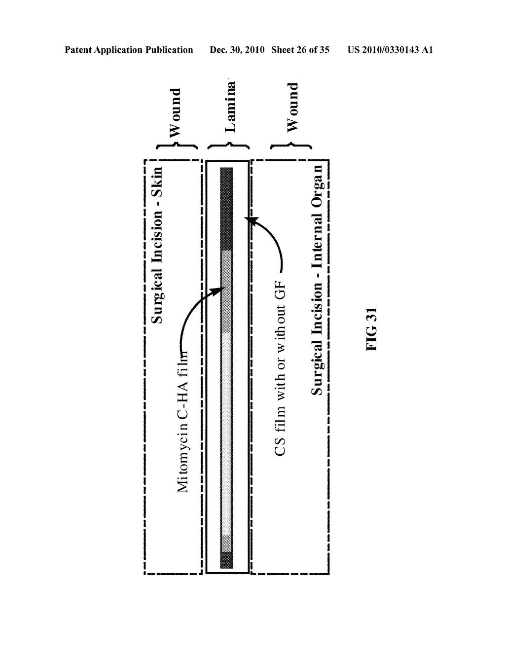 MODIFIED MACROMOLECULES AND METHODS OF MAKING AND USING THEREOF - diagram, schematic, and image 27
