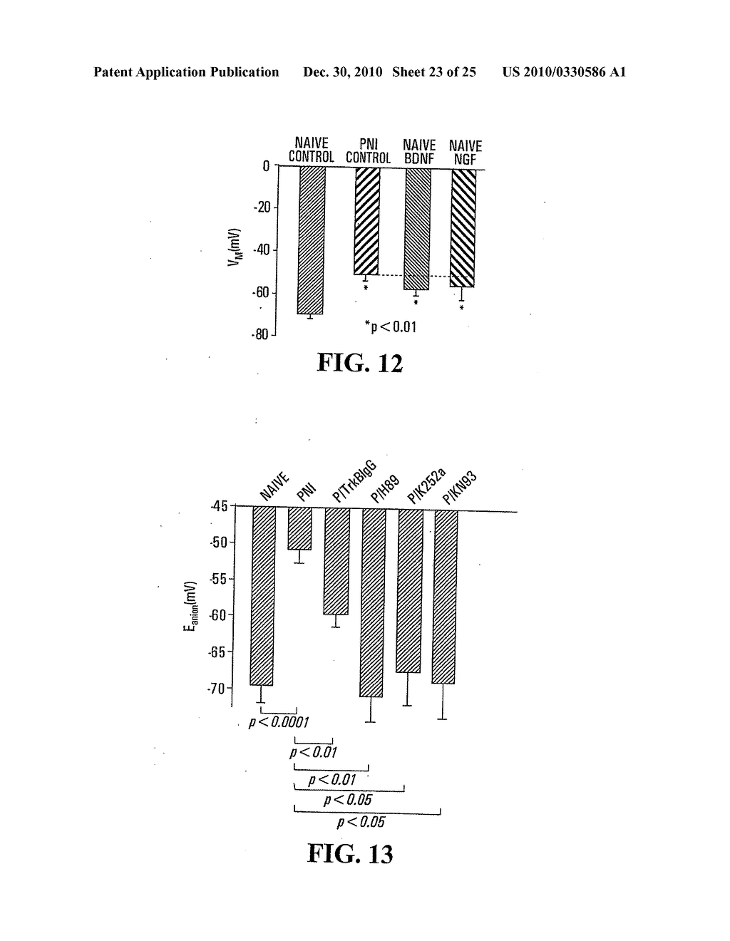 METHOD FOR IDENTIFYING COMPOUNDS FOR TREATMENT OF PAIN - diagram, schematic, and image 24