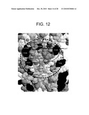 COMPOSITIONS AND METHODS FOR OPTIMIZING DRUG HYDROPHOBICITY AND DRUG DELIVERY TO CELLS diagram and image