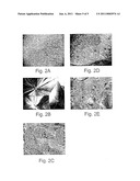 RANDOM AND NON-RANDOM ALKYLENE OXIDE POLYMER ALLOY COMPOSITIONS diagram and image