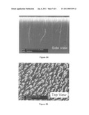 MODIFIED CARBON NANOTUBE ARRAYS diagram and image