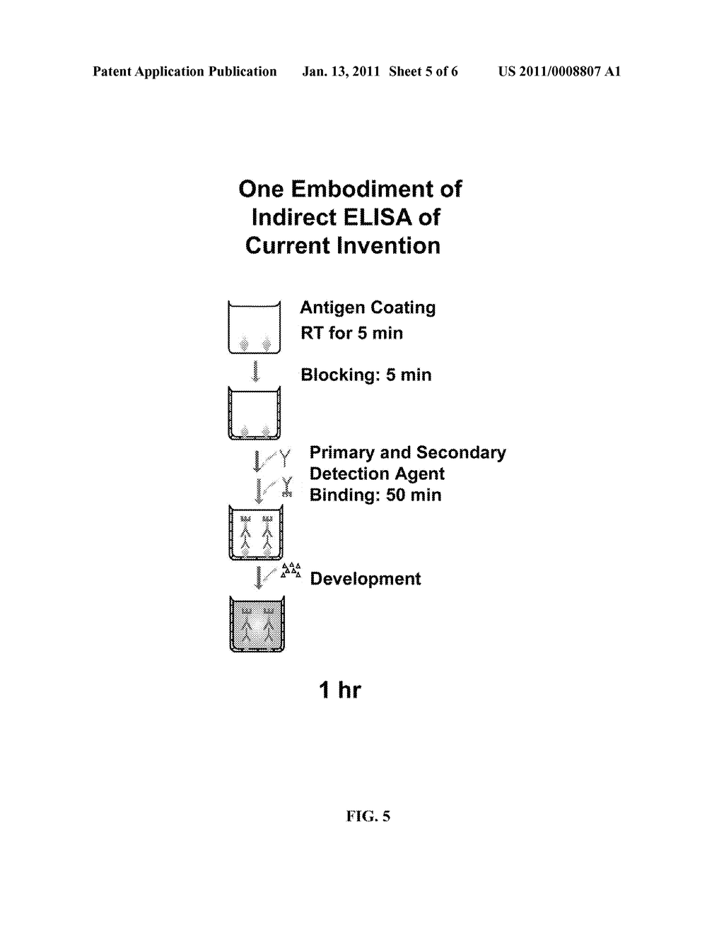 Composition Related to Rapid ELISA Process - diagram, schematic, and image 06