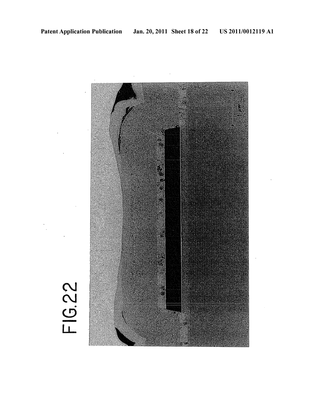 Semiconductor Device and Method for Fabricating the Same - diagram, schematic, and image 19