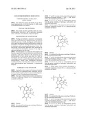 3-Oxy-Hydromorphone Derivatives diagram and image