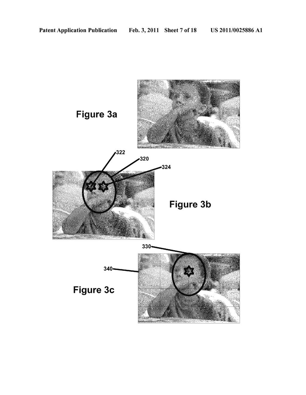 Perfecting the Effect of Flash within an Image Acquisition Devices Using Face Detection - diagram, schematic, and image 08