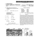 POROUS IMPLANTS AND STENTS AS CONTROLLED RELEASE DRUG DELIVERY CARRIERS diagram and image