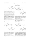 C-ARYL GLYCOSIDE COMPOUNDS FOR THE TREATMENT OF DIABETES AND OBESITY diagram and image