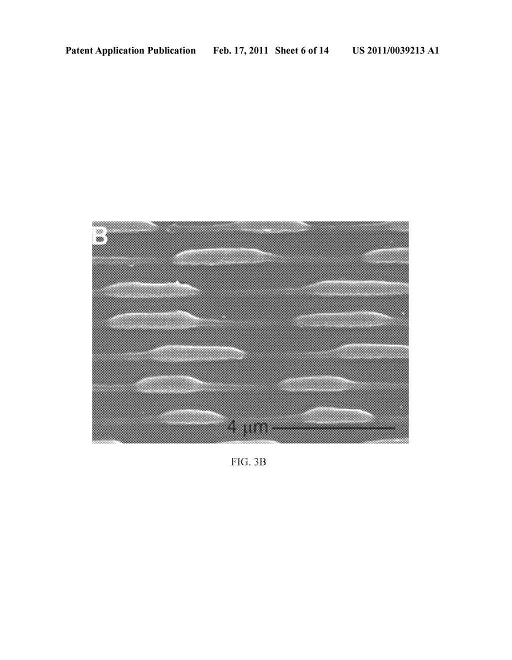 METHOD AND SYSTEM FOR PHOTOLITHOGRAPHIC FABRICATION WITH RESOLUTION FAR BELOW THE DIFFRACTION LIMIT - diagram, schematic, and image 07