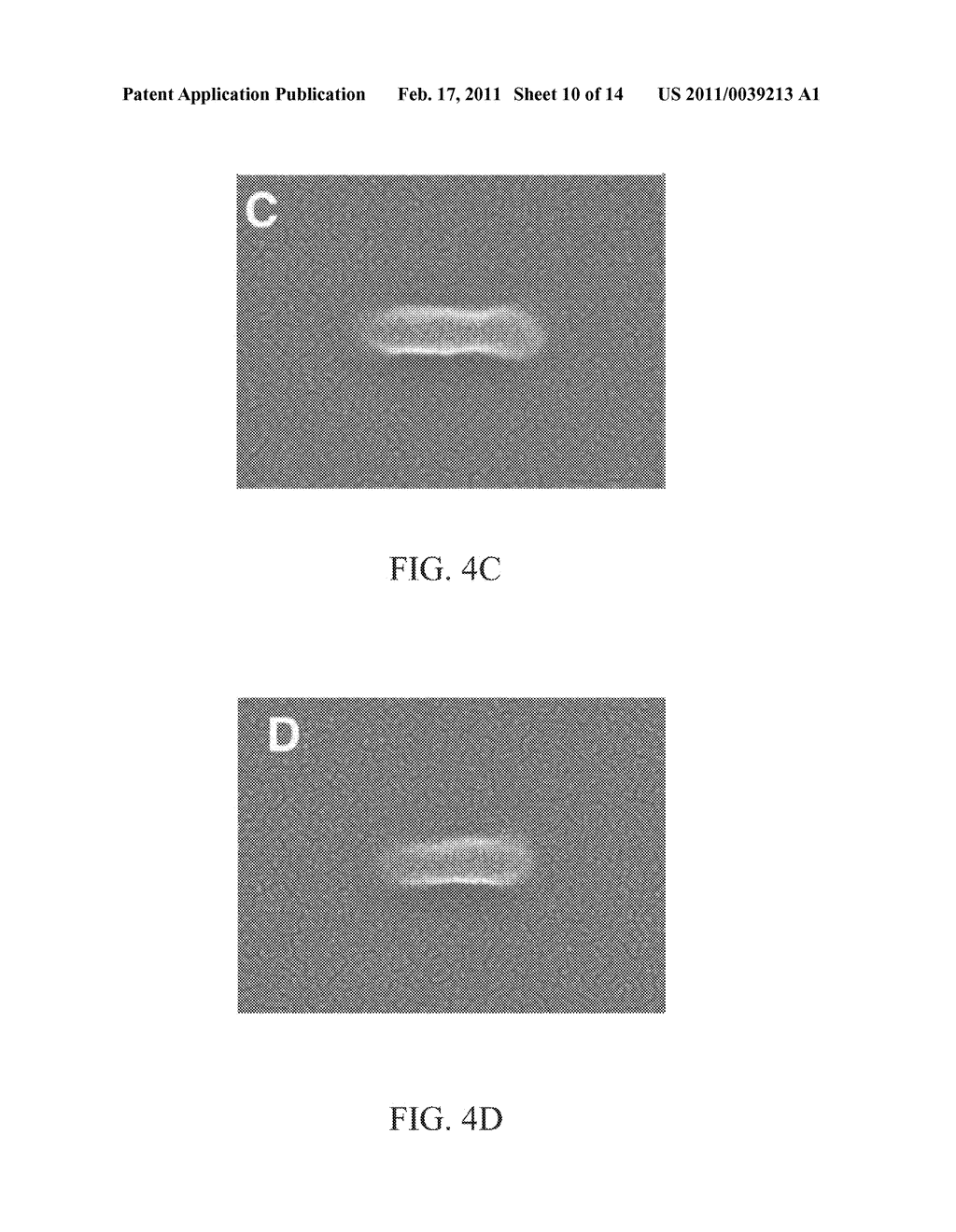 METHOD AND SYSTEM FOR PHOTOLITHOGRAPHIC FABRICATION WITH RESOLUTION FAR BELOW THE DIFFRACTION LIMIT - diagram, schematic, and image 11