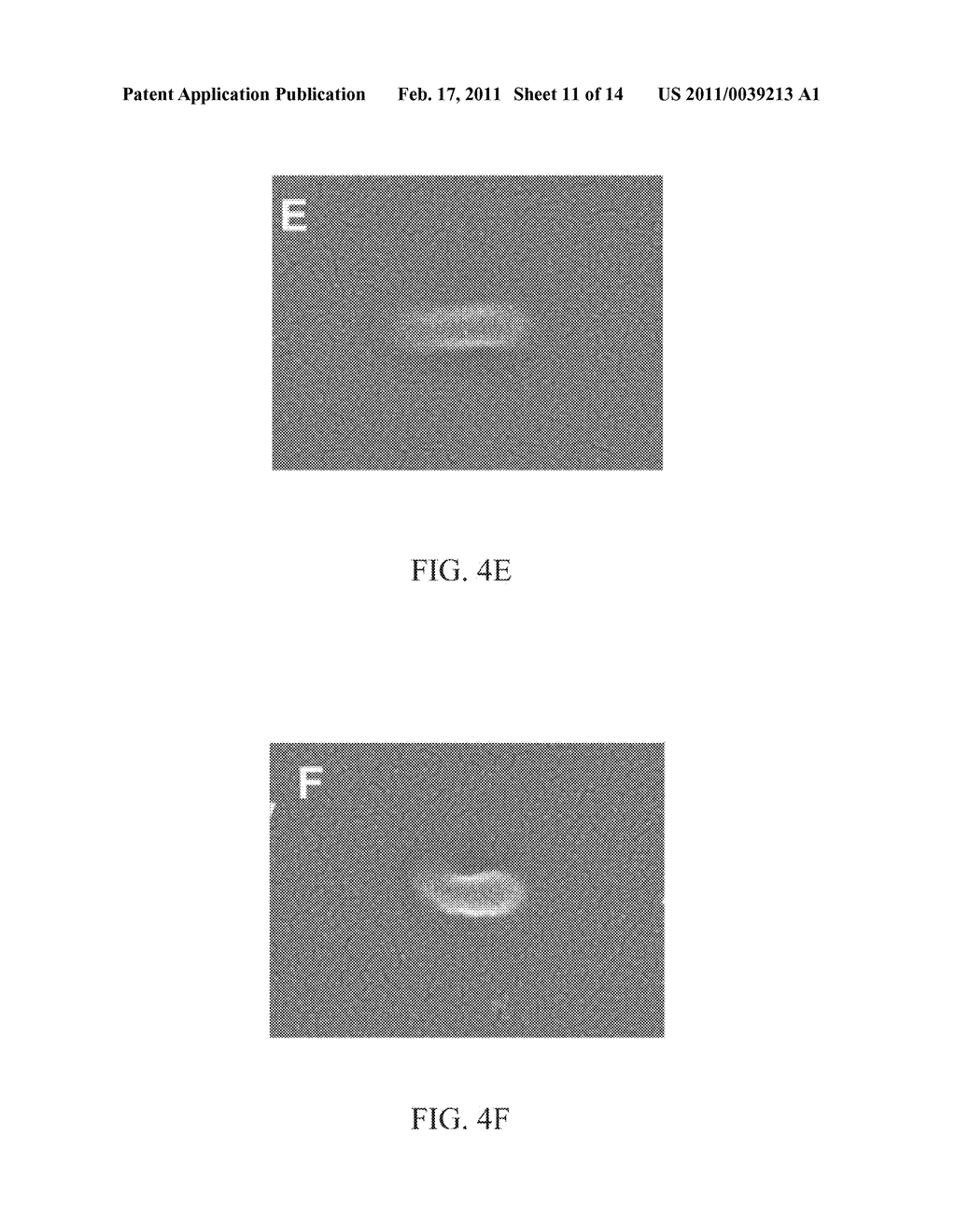 METHOD AND SYSTEM FOR PHOTOLITHOGRAPHIC FABRICATION WITH RESOLUTION FAR BELOW THE DIFFRACTION LIMIT - diagram, schematic, and image 12