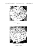 POROUS BIOCOMPATIBLE POLYMER MATERIAL AND METHODS diagram and image